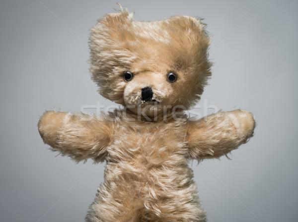 Cute teddy bear Stock photo © stokkete