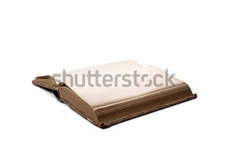 Old book with blank pages Stock photo © stokkete