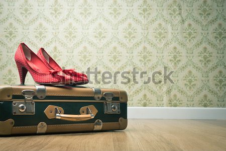 Vintage female shoes on a suitcase Stock photo © stokkete