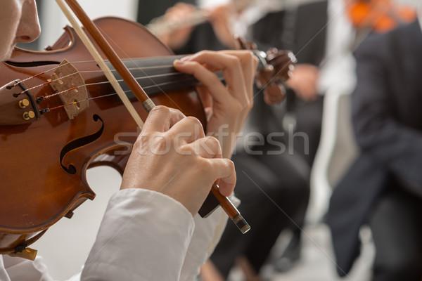 Classica orchestra string sezione musica classica Foto d'archivio © stokkete