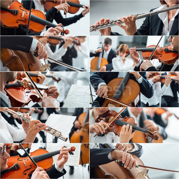 Classical Music Collage Stock photo © stokkete