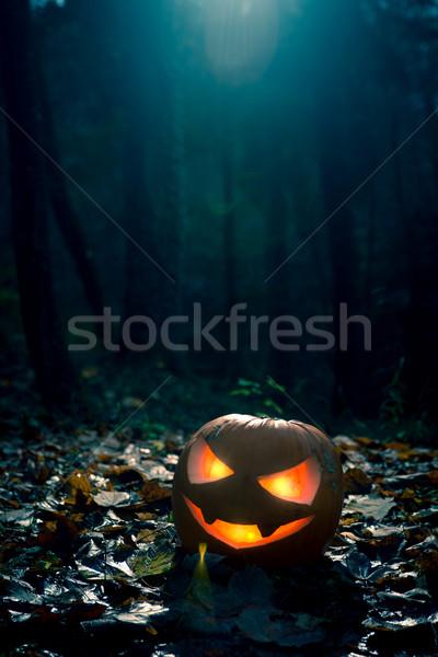Хэллоуин ночь темно лес драматический Сток-фото © stokkete