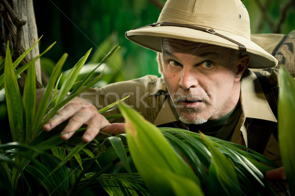 Adventurer peeking through plants Stock photo © stokkete