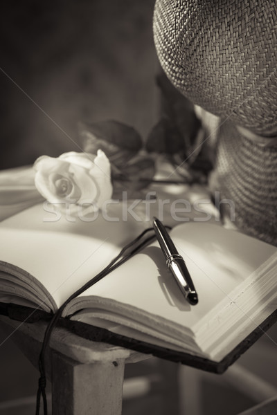Writer's diary with straw hat Stock photo © stokkete