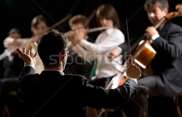 Symfonia orkiestrę artysty ciąg gry Zdjęcia stock © stokkete