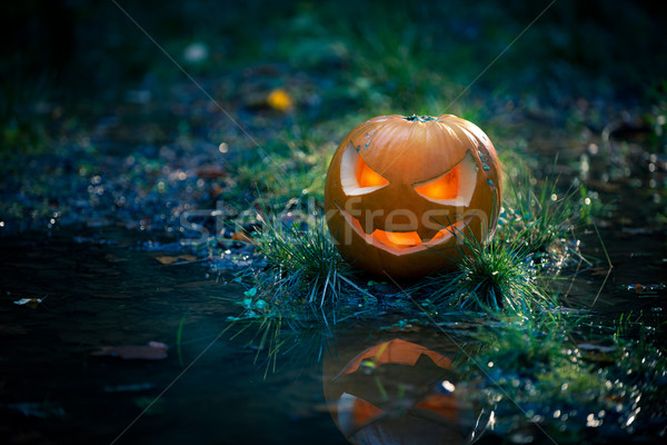 Creepy pumpkin next to a water stream Stock photo © stokkete