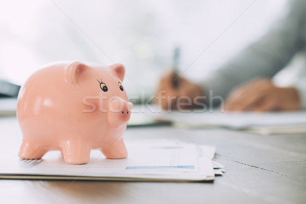 Money deposit, loans and funds concept Stock photo © stokkete