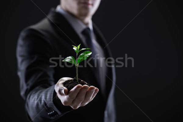 Business Growth Stock photo © stokkete