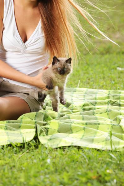Amor gatos menina bonitinho pequeno Foto stock © stokkete