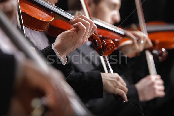 классическая музыка концерта симфония музыку скрипач стороны Сток-фото © stokkete