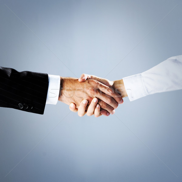 business people shaking hands Stock photo © stokkete