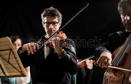 Classical music: concert Stock photo © stokkete