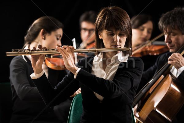 Senfoni orkestra performans profesyonel kadın Stok fotoğraf © stokkete