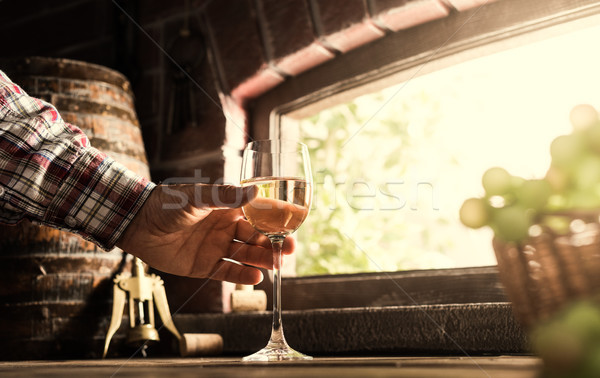 Foto stock: Vinho · especialista · degustação · vidro · jeans · delicioso