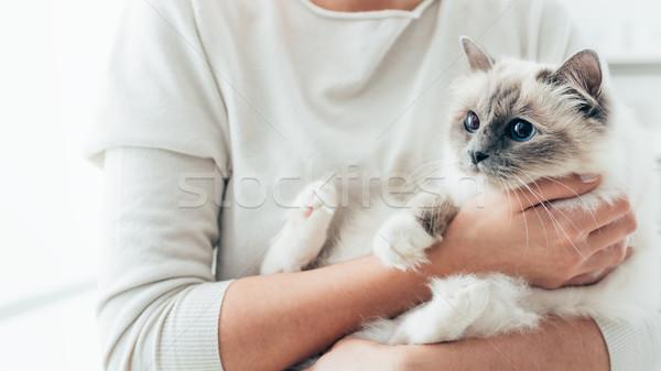 幸せ 猫 オーナー 腕 女性 ホーム ストックフォト © stokkete