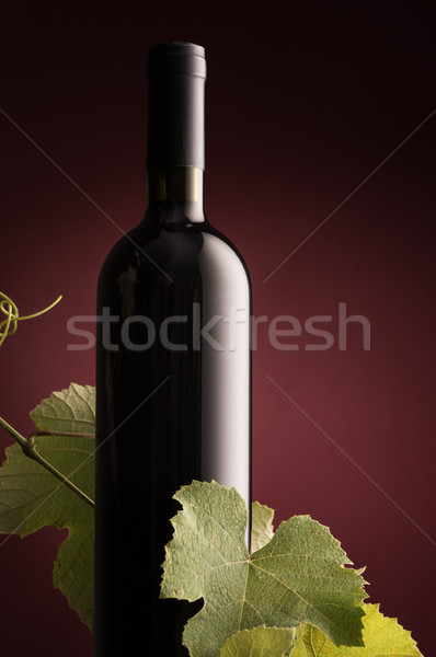 Rew wine bottle with vine branch Stock photo © stokkete
