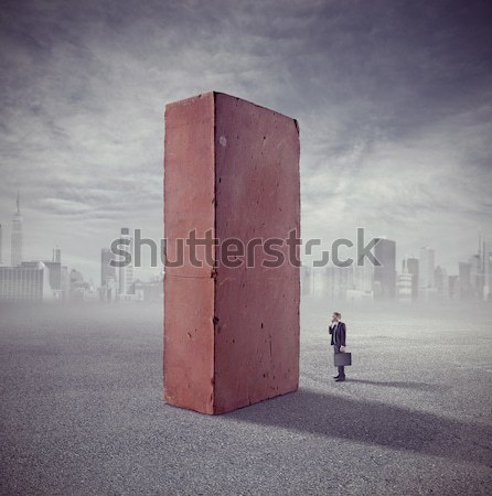 Post atomic landscape with brick standing Stock photo © stokkete