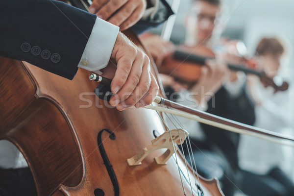 Cello player's hands close up Stock photo © stokkete