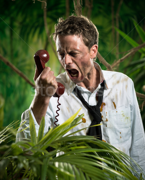 Furious businessman on the phone lost in jungle Stock photo © stokkete