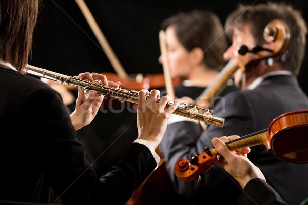 Szimfónia zenekar előadás közelkép profi női Stock fotó © stokkete