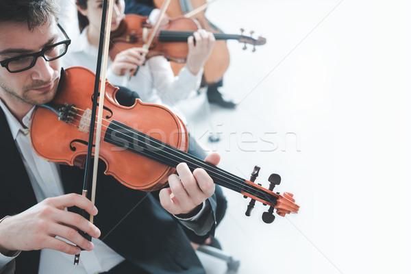 Stock fotó: Hegedű · játékosok · előad · profi · férfi · játékos