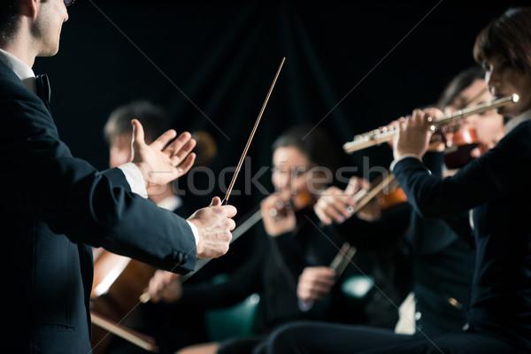 Sinfonía orquesta violín artista cadena Foto stock © stokkete