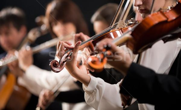 Orchester erste Violine Abteilung Symphonie Stock foto © stokkete