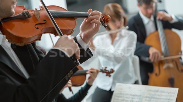 Klassische Musik Symphonie Orchester Leistung Geiger spielen Stock foto © stokkete
