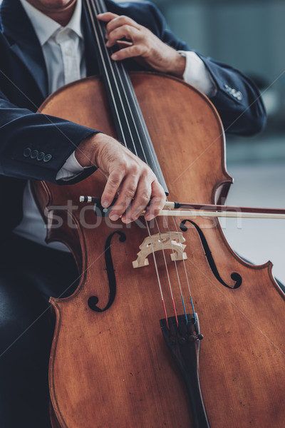 Stock photo: Professional cellist performing