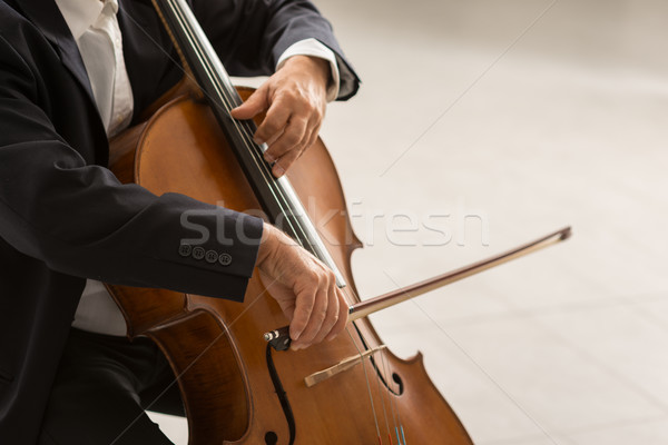 Professional cellist performing Stock photo © stokkete