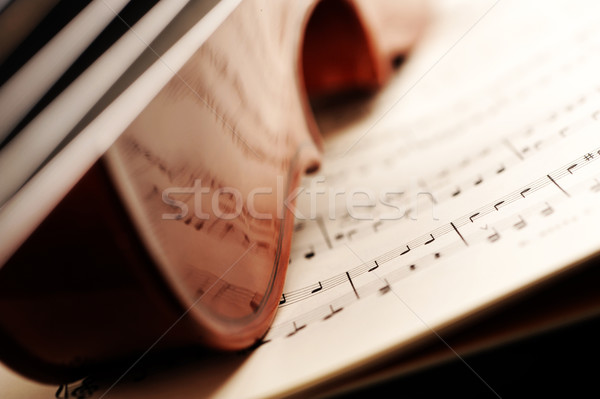 violin Stock photo © stokkete
