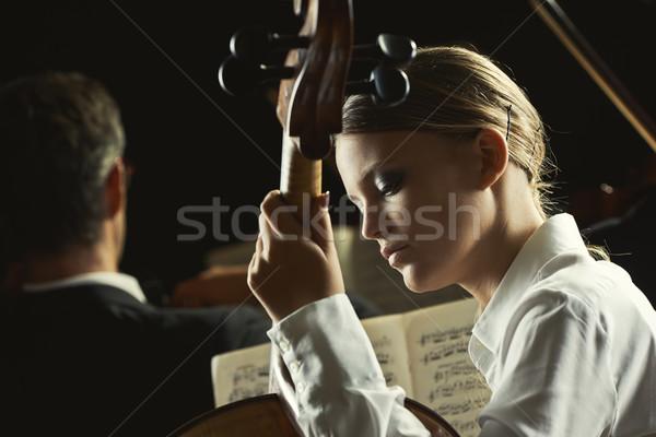 Csellista koncert fiatal gyönyörű nő játszik cselló Stock fotó © stokkete