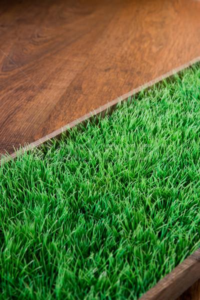 Jardinage vert luxuriante herbe artificielle sombre Photo stock © stokkete