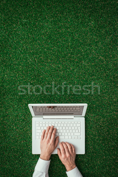 Stock photo: Green office