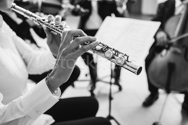 Spelen instrument fase professionele vrouwelijke klassieke muziek Stockfoto © stokkete