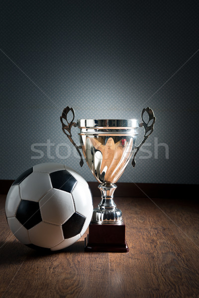 Soccer championship cup Stock photo © stokkete