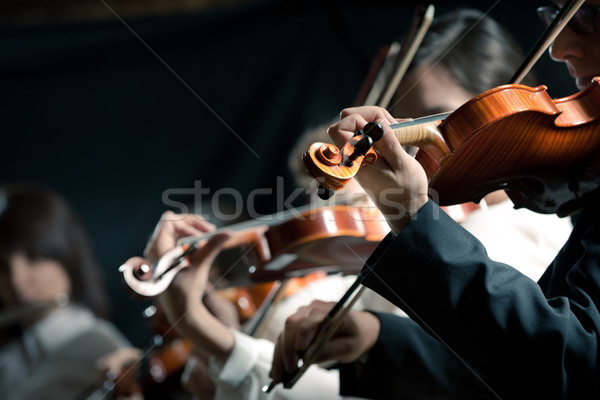 Symphony orchestra violinists performing Stock photo © stokkete