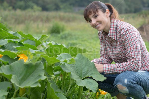 幸せ 植木屋 ポーズ 植物 笑みを浮かべて 女性 ストックフォト © stokkete