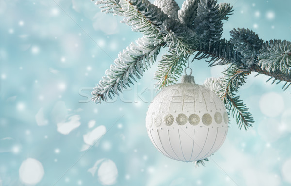 Christmas Decoration Stock photo © stokkete
