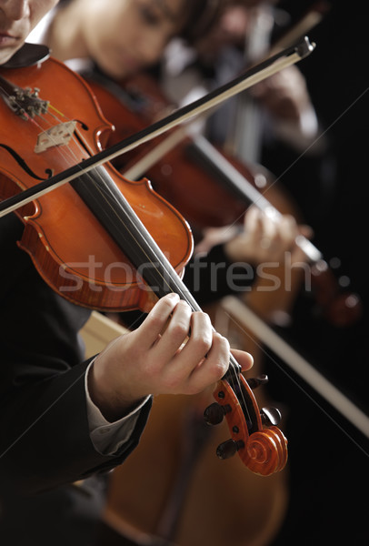 Classical music. Violinists in concert Stock photo © stokkete