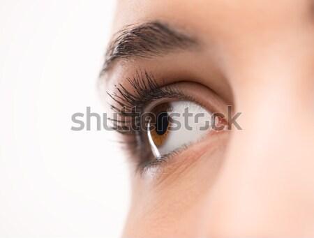 Beautiful woman's eye close-up Stock photo © stokkete