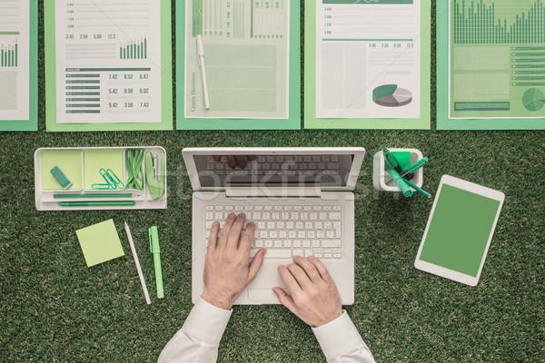 Yeşil iş işadamı dizüstü bilgisayar kullanıyorsanız finansal Stok fotoğraf © stokkete