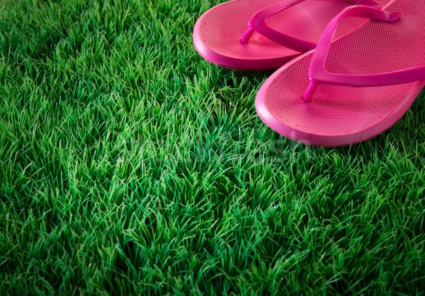 Exuberante hierba rosa verde césped artificial Foto stock © stokkete