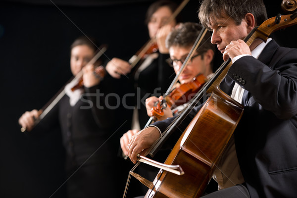 String orchestra performance Stock photo © stokkete