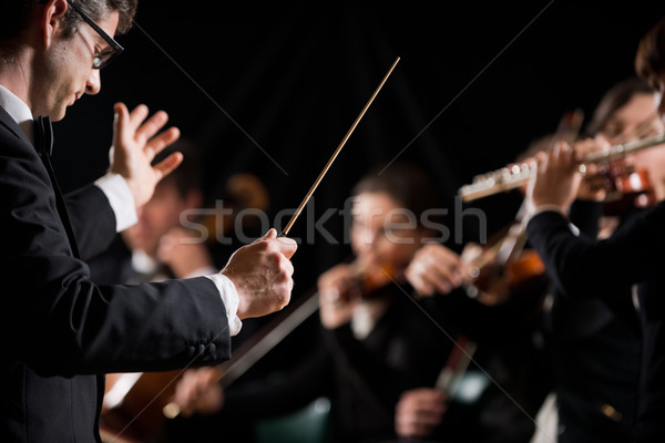Senfoni orkestra keman sanatçı dizi Stok fotoğraf © stokkete