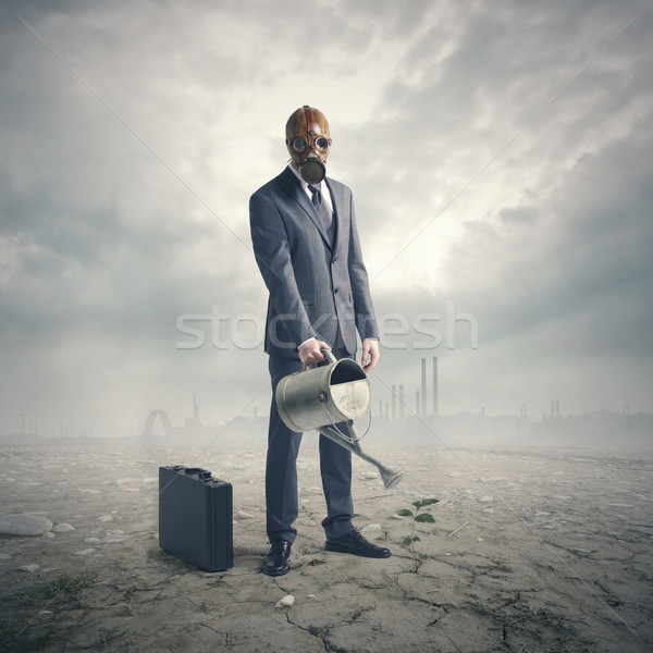 Businessman Watering Plant in Desert Stock photo © stokkete