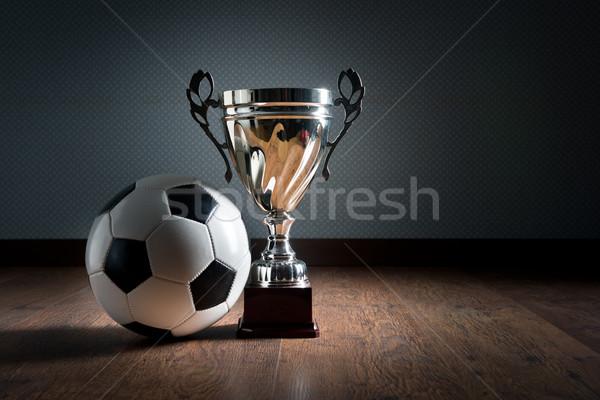 Fútbol campeonato taza oro trofeo balón de fútbol Foto stock © stokkete