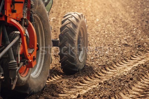 Traktor mezők munka napos nyár nap Stock fotó © stokkete