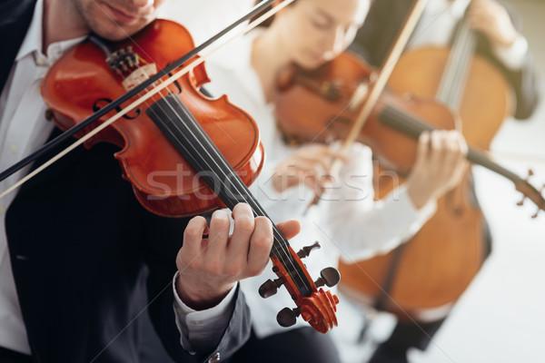 Zenekar fonal részleg előad klasszikus zene szimfónia Stock fotó © stokkete