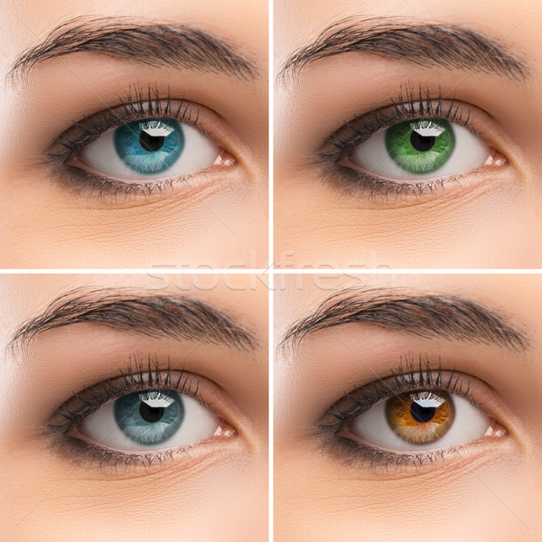 Set of women's Eyes Stock photo © stokkete